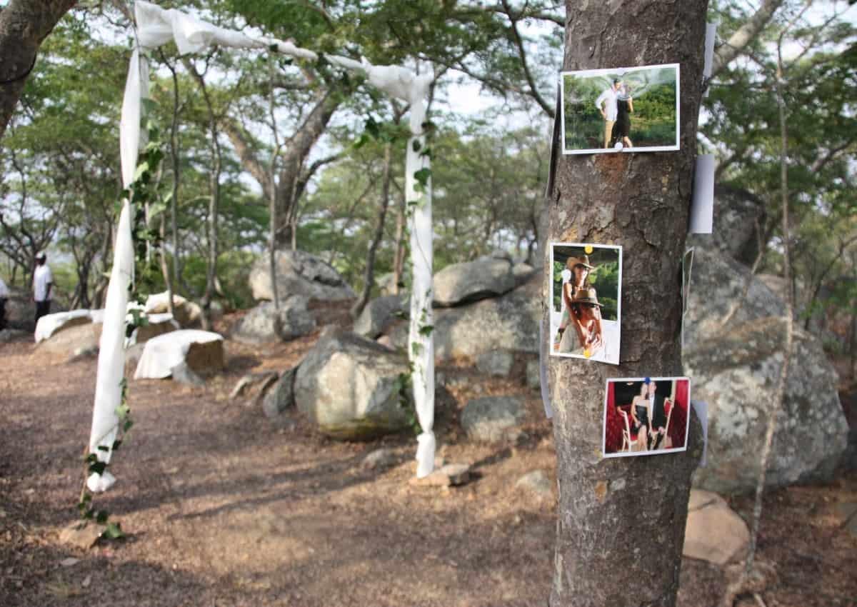 Tree of Life Weddings